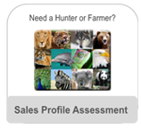 Sales Profile Assessment