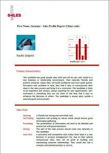 Sales Assessment Report